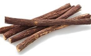 Lékořice (Glycyrrhiza glabra)
